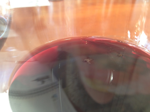 Look closely and you can see the two fruit flies enjoying my wine.
